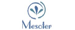 logo-mesoter-1